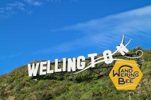 Windy Wellingtonのサイン