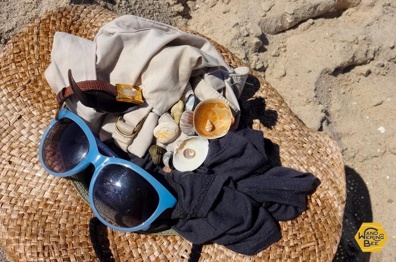 ビーチで貝殻拾いを楽しんでみたり