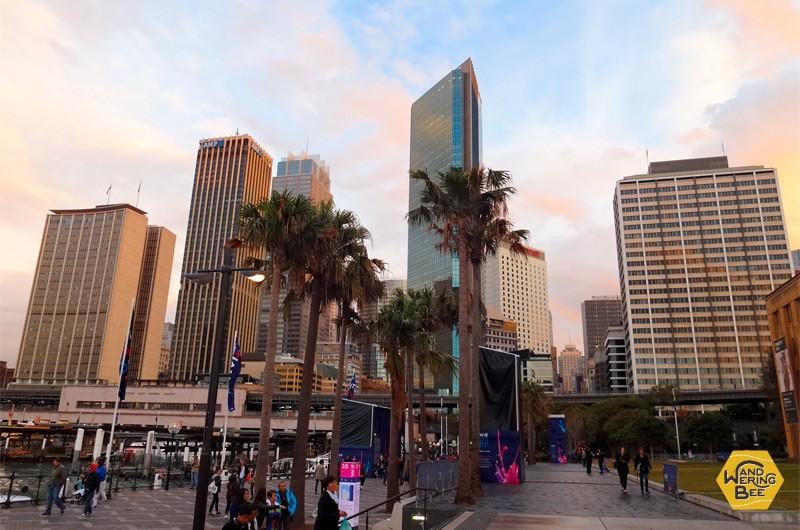 大都市シドニーでの夕暮れ