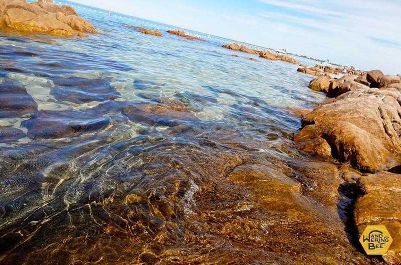 圧倒的な透明度を誇る海水。海の底まで見通せます