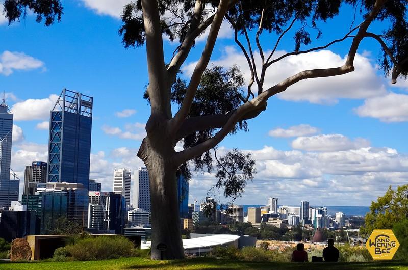 キングス・パークから西オーストラリアの州都パースを見下ろす