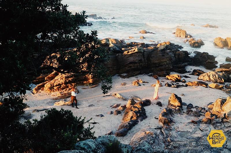 海岸沿い岩々と木々は夕焼け時に幻想的な空間を創りだします