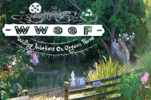 海外長期滞在にぴったりな有機農業ボランティアのひとつ、WWOOFを紹介します!