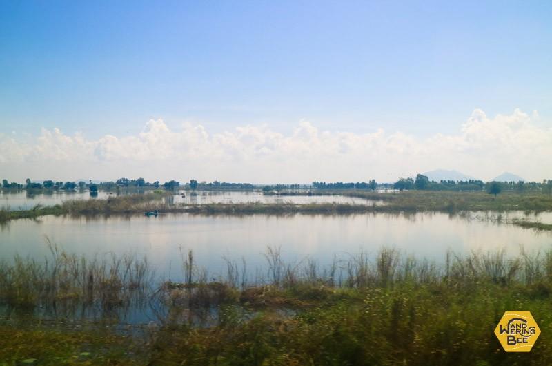 穏やかさに心奪われるタイの田舎の光景