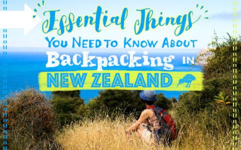 ニュージーランドでバックパッキングするなら知っておきたい知識のまとめ