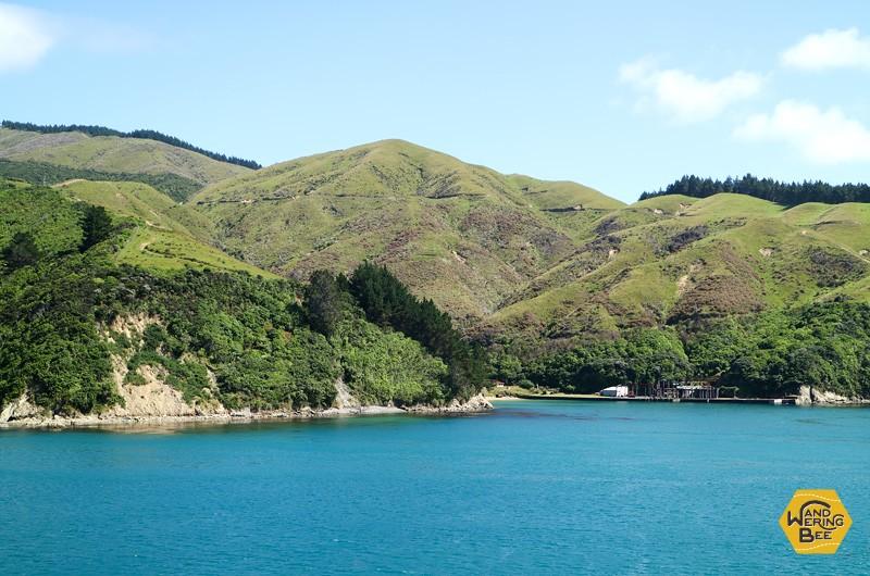 タスマン海峡を渡るフェリーはローカル客・観光客共に人気