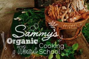 【動画つき】タイ料理を学ぶ!in チェンマイ:Sammy's Organicに行ってきたよ
