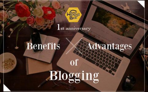 ブログ開設1年!続けることのメリットとそこから得た成長をまとめました