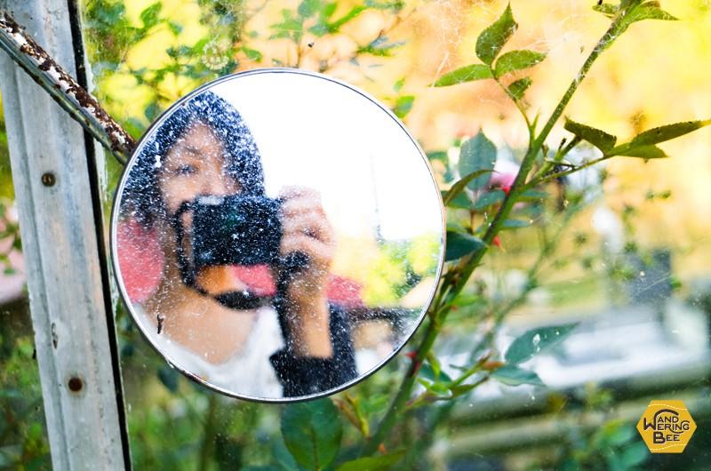 ブログは自分を映す鏡のようなもの