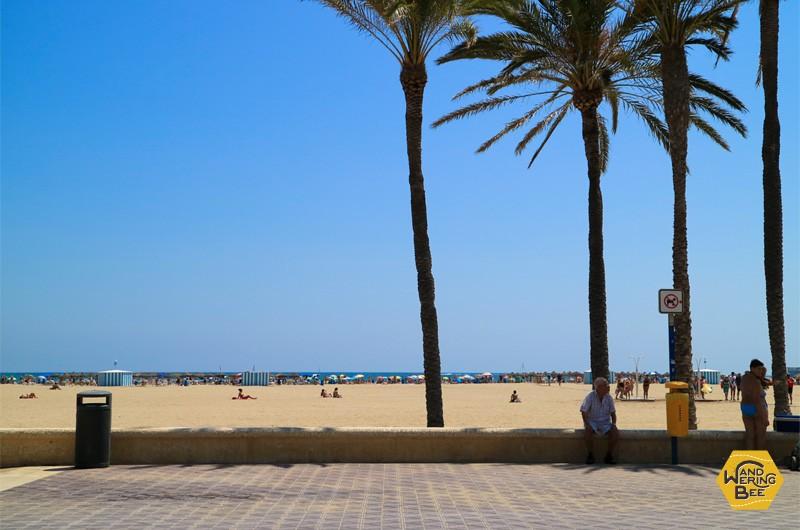 白い砂浜と長い水平線がどこまでも続くかのようなマルバロサ・ビーチ
