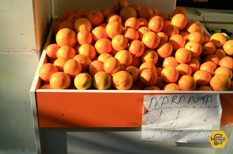露店に並ぶおいしそうなナランハ(オレンジ)