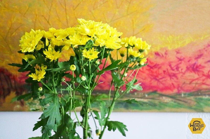 誕生日に頂いた、黄色い鮮やかなお花