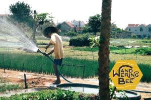 有機栽培農場で働く農夫