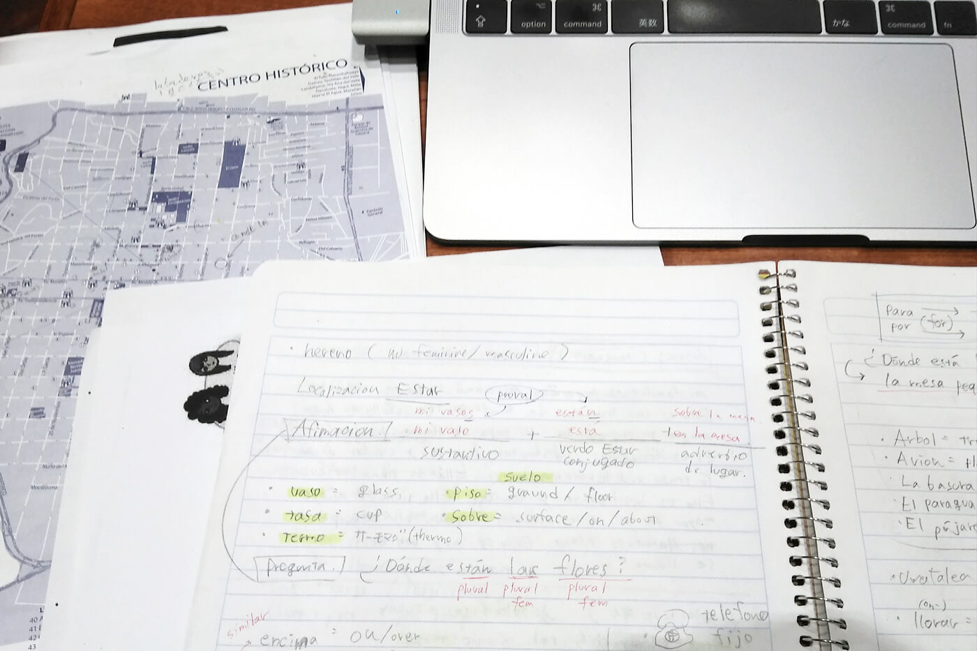ノートとオンラインのリソースを駆使して午後は図書館で復習